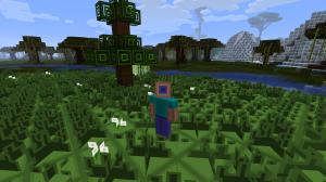 Steve in a field